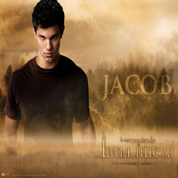 Oficial jacob black wallpaper jacob black 9164560 1600 1200